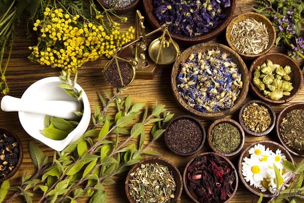 Các loại thảo dược giúp tăng nội tiết tố nữ